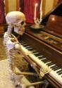 Lifesize Poseable Skeleton alt 1