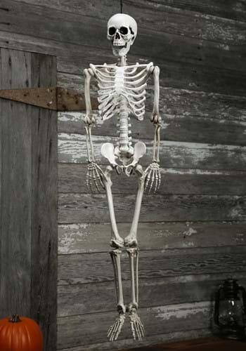 Plastic Realistic Skeleton