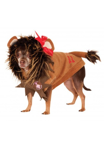 Click Here to buy Cowardly Lion Pet Costume from HalloweenCostumes, CDN Funds & Shipping