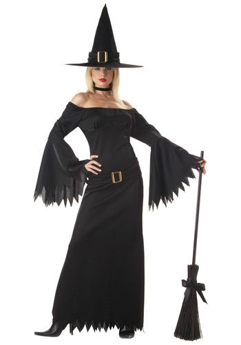 Click Here to buy Adult Sexy Witch Costume from HalloweenCostumes, CDN Funds & Shipping