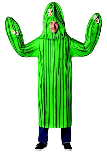 Click Here to buy Adult Cactus Costume from HalloweenCostumes, CDN Funds & Shipping