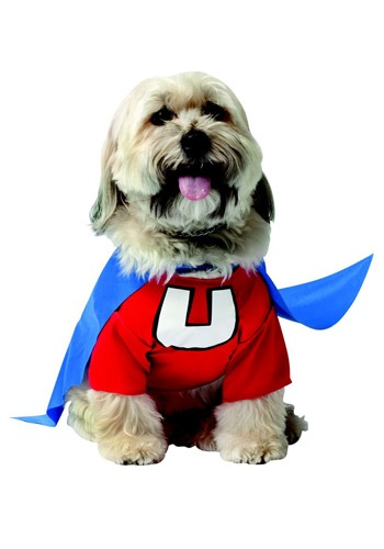 Click Here to buy Underdog Dog Costume from HalloweenCostumes, CDN Funds & Shipping