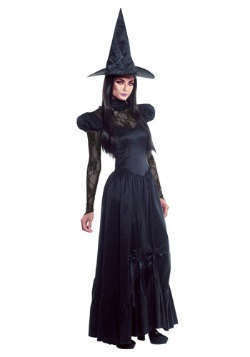 Womens Plus Size Emerald Witch Costume