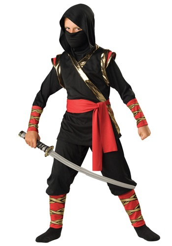 Click Here to buy Ninja Costume from HalloweenCostumes, CDN Funds & Shipping