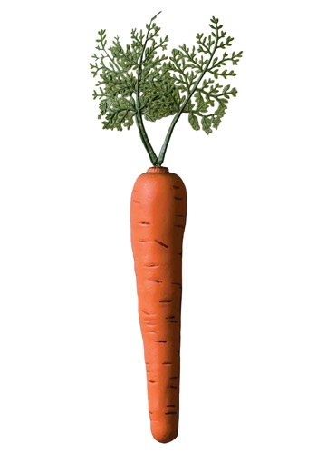 Click Here to buy Bunny Carrot Accessory from HalloweenCostumes, CDN Funds & Shipping