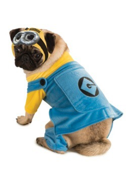 Minion Pet Costume