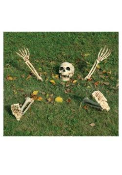 Buried Alive Skeleton Kit
