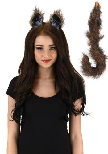 Furry Brown Cat Tail and Ears