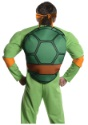 Deluxe Adult Michelangelo back