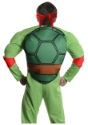 Deluxe Adult Raphael back