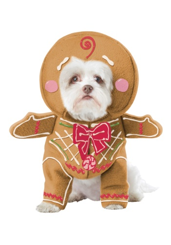 Click Here to buy Gingerbread Pup Dog Costume from HalloweenCostumes, CDN Funds & Shipping
