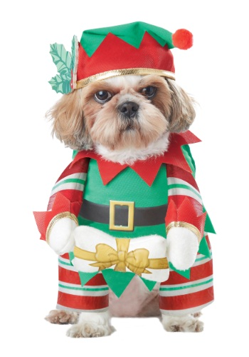 Click Here to buy Elf Pup Dog Costume from HalloweenCostumes, CDN Funds & Shipping