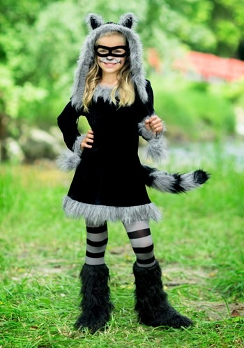 Sweet Raccoon Girls Costume