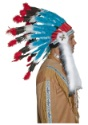 Authentic Western Indian Headdress alt2