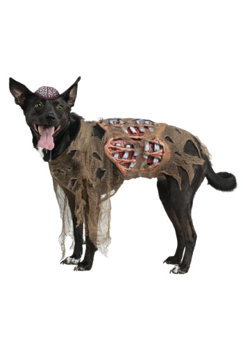 Click Here to buy Zombie Dog Costume from HalloweenCostumes, CDN Funds & Shipping