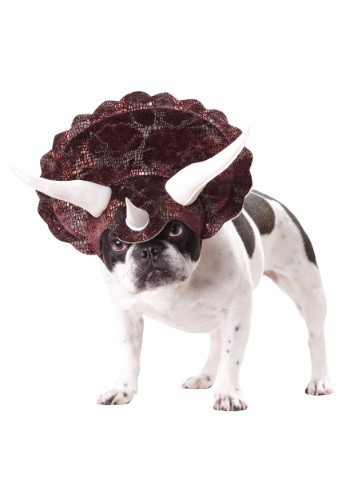 Click Here to buy Triceratops Dog Costume from HalloweenCostumes, CDN Funds & Shipping