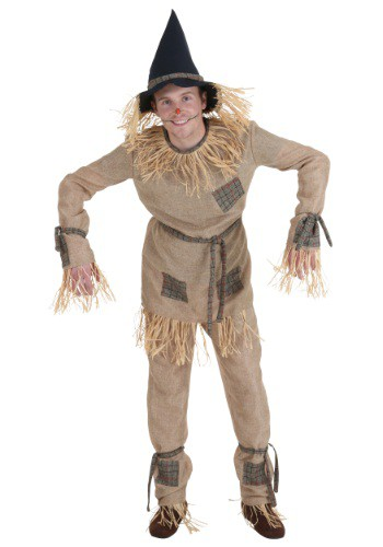 Click Here to buy Plus Size Silly Scarecrow Costume from HalloweenCostumes, CDN Funds