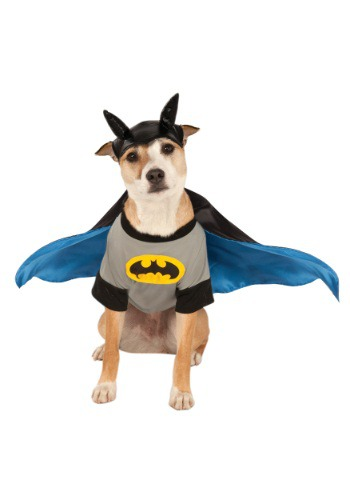 Click Here to buy Batman Pet Costume from HalloweenCostumes, CDN Funds & Shipping