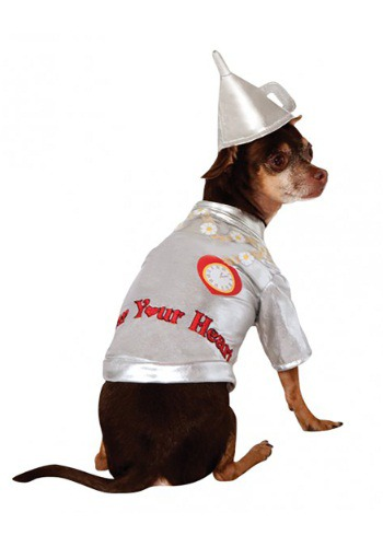 Click Here to buy Tin Man Dog Costume from HalloweenCostumes, CDN Funds & Shipping