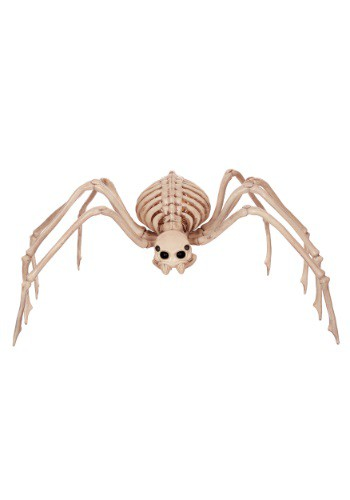 Skeleton Spider