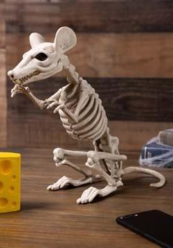 Skeleton Rat