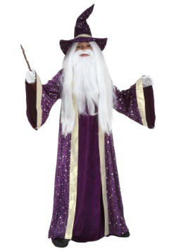 Kids Wizard Costume