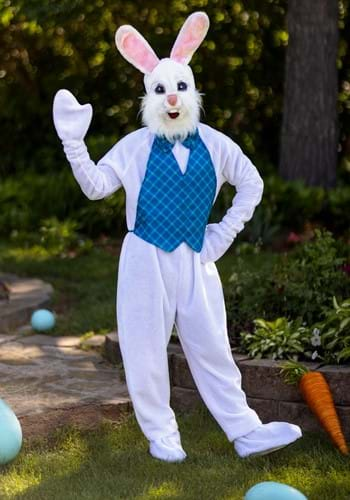 Click Here to buy Mascot Happy Easter Bunny Costume from HalloweenCostumes, CDN Funds & Shipping
