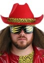 Plus Size Macho Man Randy Savage Costume Alt 4