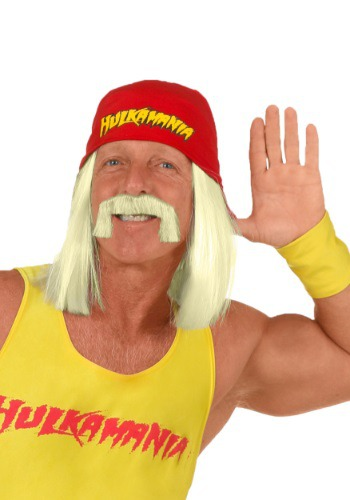 WWE Hulk Hogan Wig