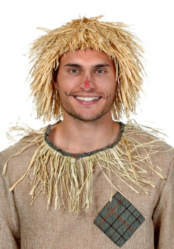 Click Here to buy Scarecrow Wig from HalloweenCostumes, CDN Funds