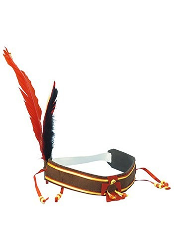 Click Here to buy Native American Feather Harvest Headband from HalloweenCostumes, CDN Funds & Shipping