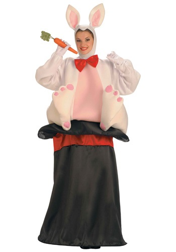 Click Here to buy Adult Magic Hat Rabbit Costume from HalloweenCostumes, CDN Funds & Shipping