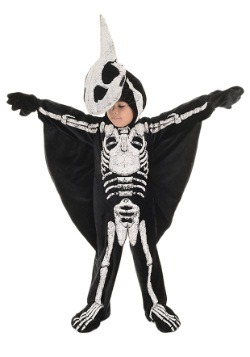 Kids Pteradactyl Fossil Costume