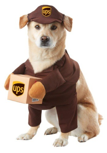 Click Here to buy UPS Dog Costume from HalloweenCostumes, CDN Funds & Shipping