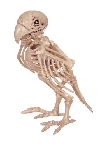 Skeleton Parrot