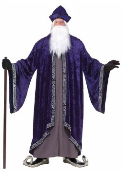 Plus Size Grand Wizard Costume
