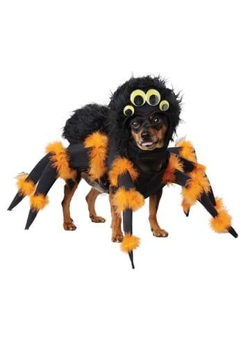 Spider Pup Costume