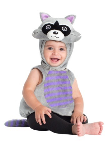 Click Here to buy Baby Raccoon Costume from HalloweenCostumes, CDN Funds