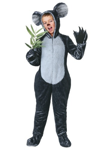Koala Costume for Boys