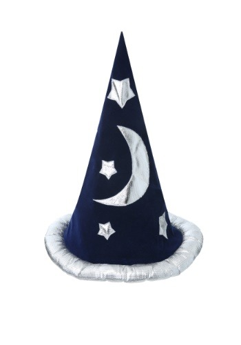 Wizard Adult Hat