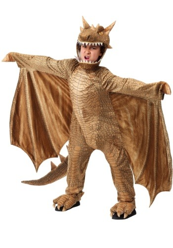 Click Here to buy Fantasy Dragon Kids Costume from HalloweenCostumes, CDN Funds & Shipping