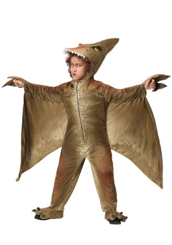 Pterodactyl Costume for a Child