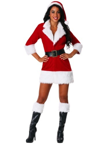 Womens Plus Size Secret Santa Costume