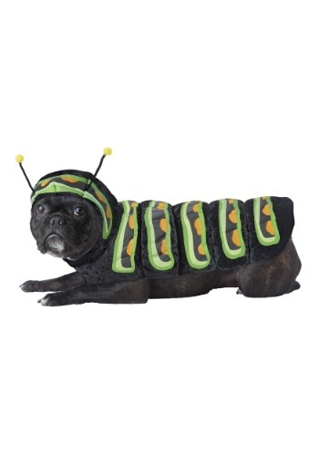 Click Here to buy Caterpillar Costume for Dogs from HalloweenCostumes, CDN Funds & Shipping