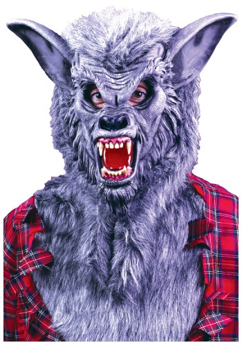 Click Here to buy Grey Werewolf Mask from HalloweenCostumes, CDN Funds & Shipping