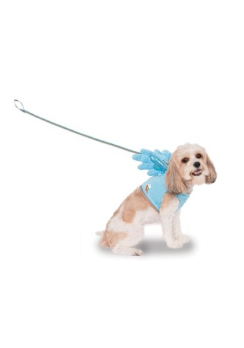 Rainbow Dash Pet Costume