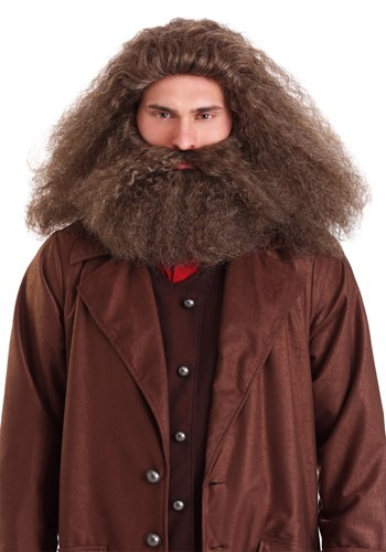 Click Here to buy GameKeeper Wizard Beard and Wig from HalloweenCostumes, CDN Funds & Shipping