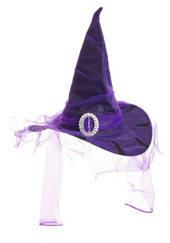 Click Here to buy Black Witch Hat with Purple colored Veil from HalloweenCostumes, CDN Funds & Shipping