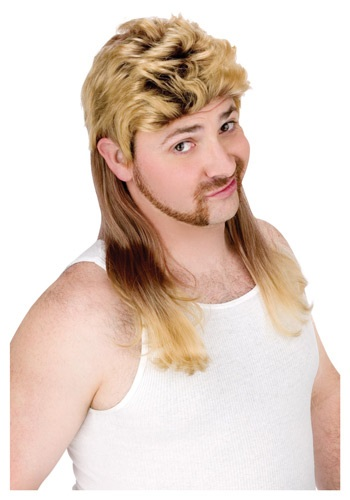 Click Here to buy Blonde Mullet Wig from HalloweenCostumes, CDN Funds & Shipping