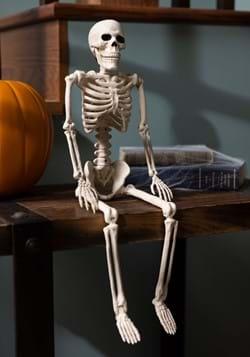 """24"""" Skeleton"""